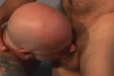 lustful Police Bear Getting biggest gigantic 10-Pounder Sucked By Prisoner