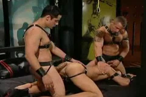 Free gay porn leather