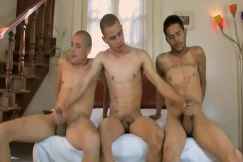 Mexicans homo fellows pounding three