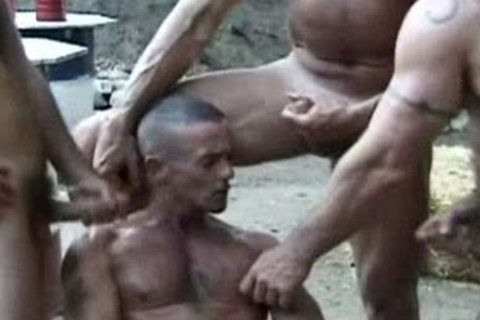 cock Wadd - biggest Poles Hungry Holes