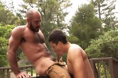 shaggy Muscle Bald Bear bonks Jay Roberts