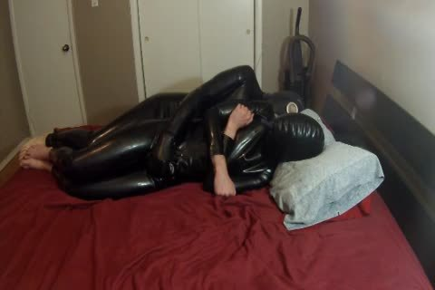 Two Pups Having Some Rubbery pleasure.