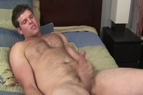 Jake - hairy Solo Bear