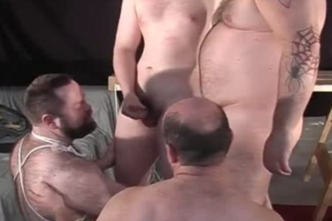 Unbound Bears - Scene 1 - Pig Daddy Productions