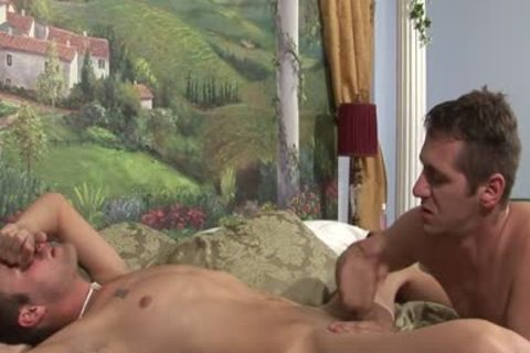 Randy homo males Are plowing In sofa painfully