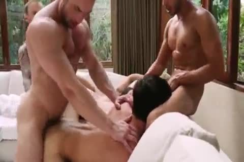 Breed That wazoo - bareback bunch sex 5