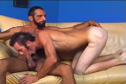 Two shaggy dudes Randy And Tom Colt poke Each Other