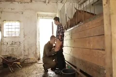 excited boyz group sex In The Farm