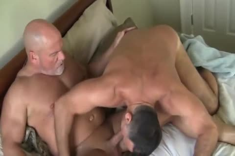 more At 3mystuff.com - lustful Bears