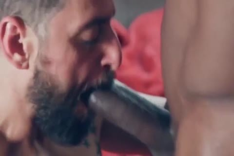 crazy homosexual movie With large wang, bareback Scenes