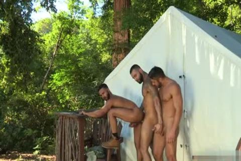 Muscle Bear 3some And Facial cum