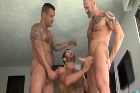 Vinnie Stefano, David Benjamin And Dallas Steele