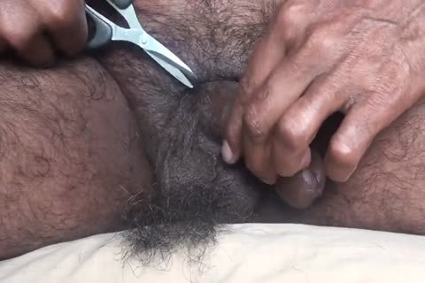 230819MY PEELED LINGOM BALLS butthole FOREST PUBIC HAIR TRIM