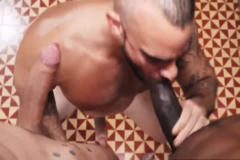 White homo anal plowed By BBC And BWC In unprotected - GayTV