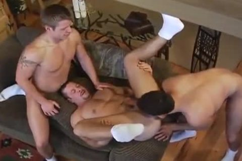 Vinnie D'Angelo, Jude Collin And Justin Jameson (WH P4)